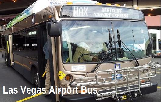 Vegas Transportation